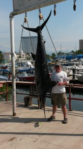 marlin fishing puerto vallarta report