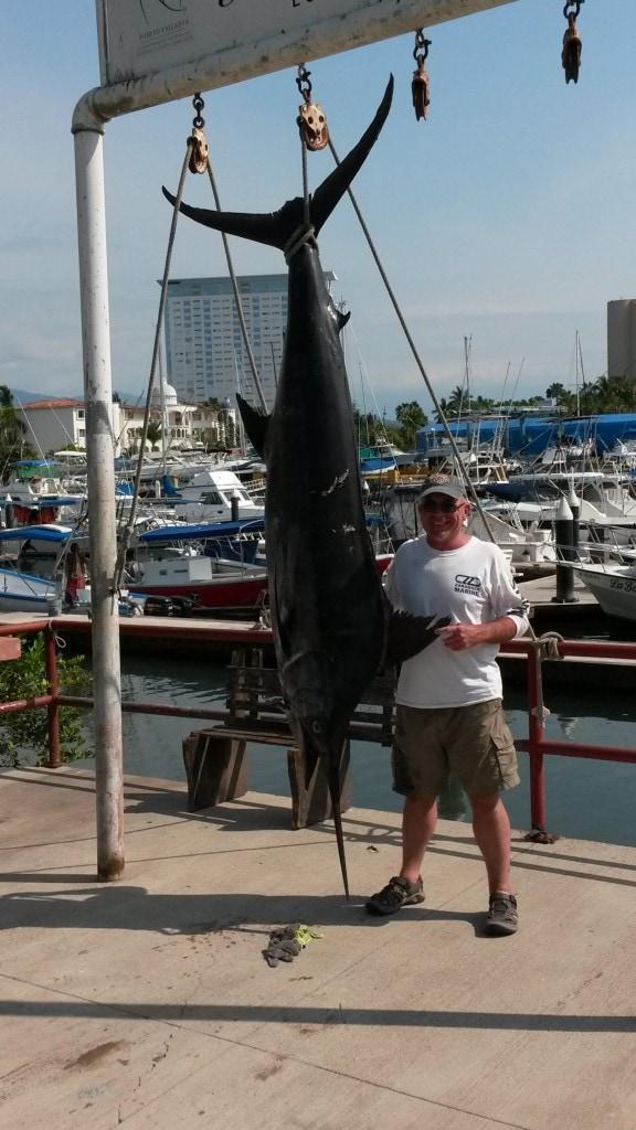 marlin fishing puerto vallarta report