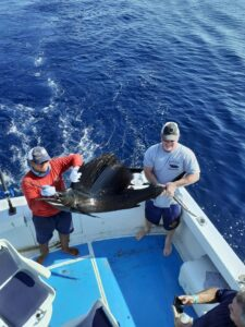 fishing for sailfish in nuevo vallarta